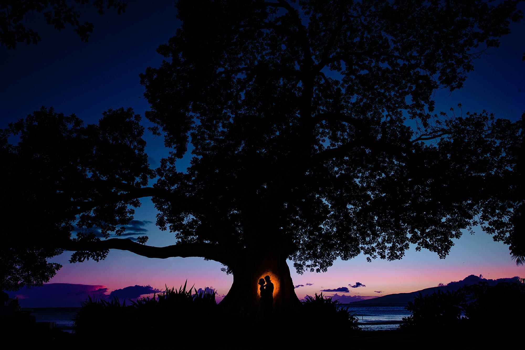 magnet mod photo with tree at olowalu plantation house
