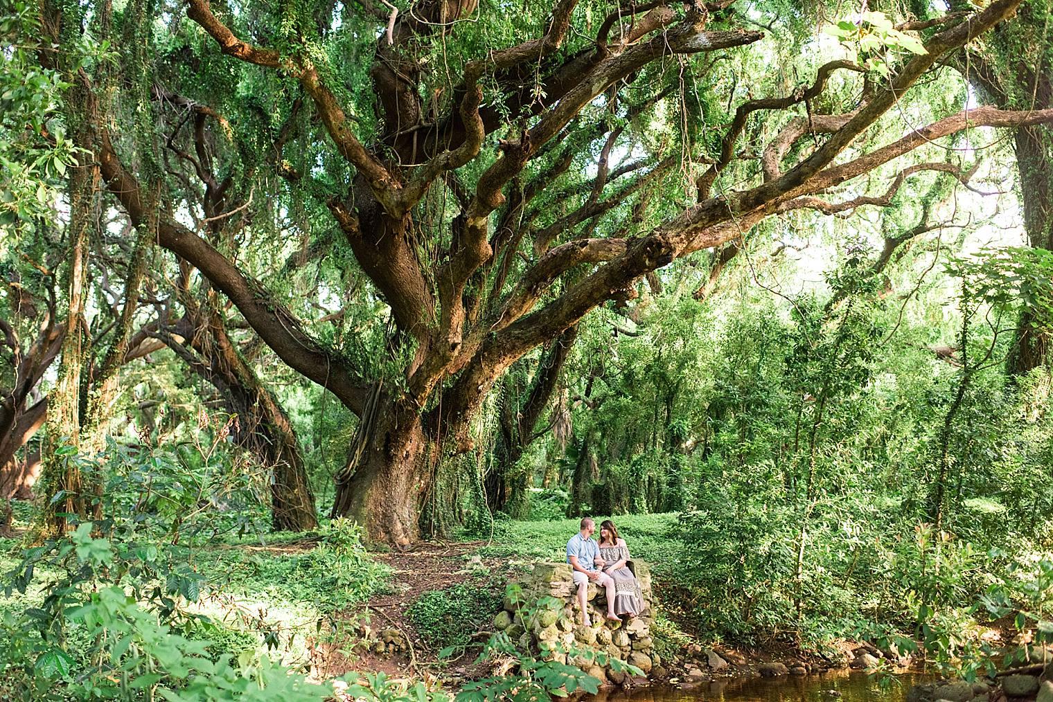 Gorgeous Anniversary Photos in Maui, Hawaii_0008