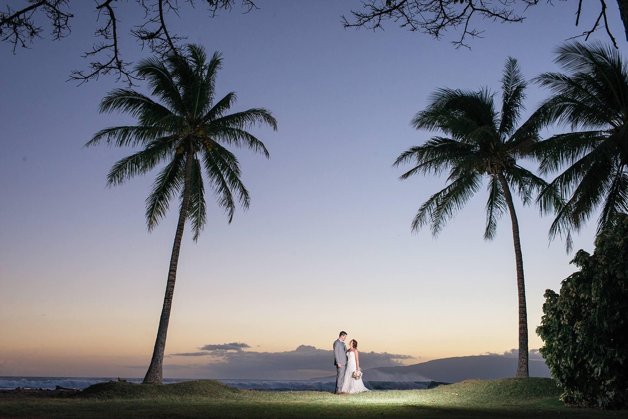landscape sunset portrait with palm trees