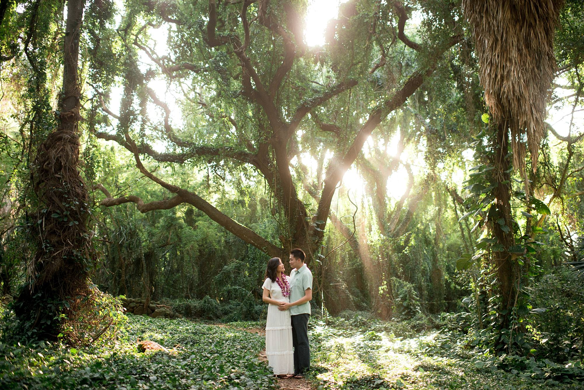 Pregnant woman and husand in honolua jungle maternity shot light streaming in
