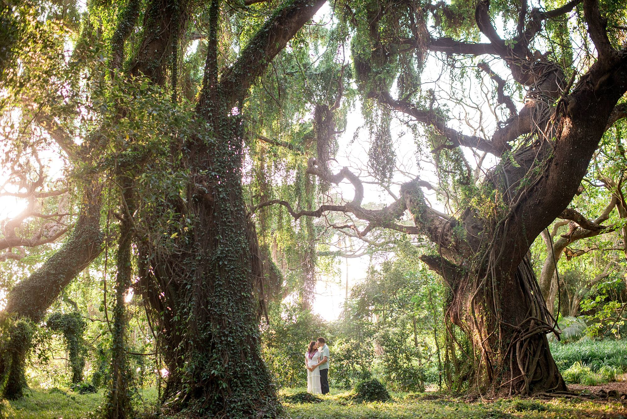 Husband and wife hugging in between the trees
