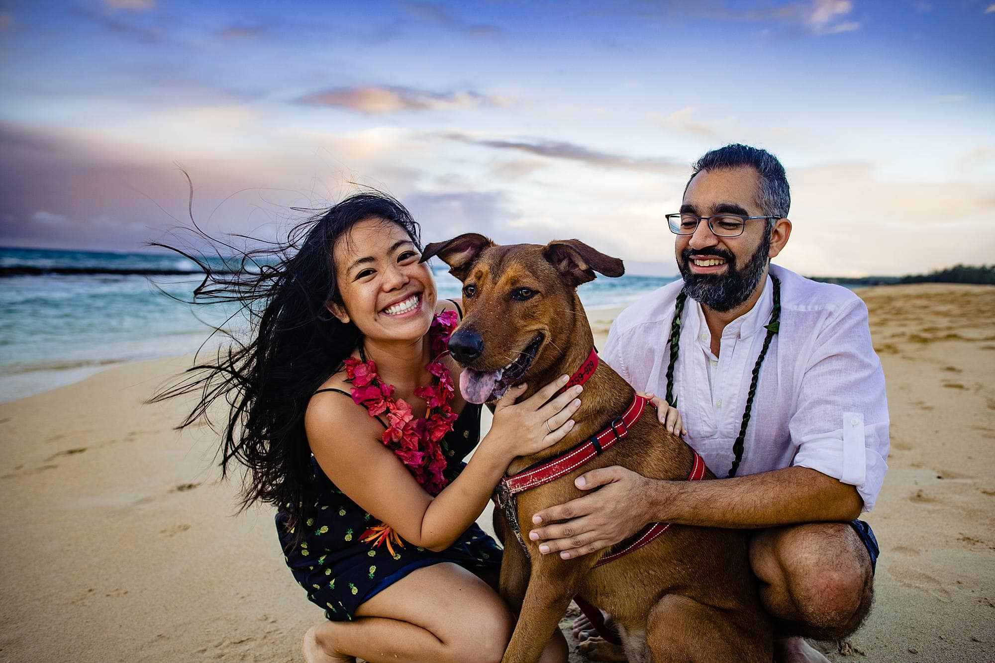 engagement photos with a dog in maui