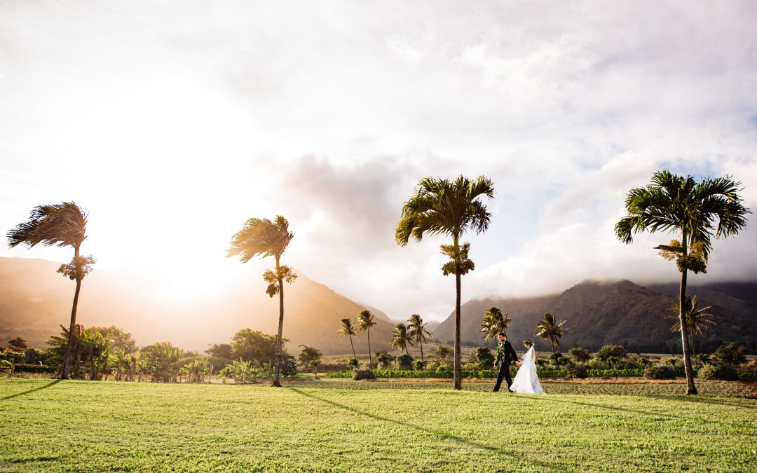 Maui Tropical Plantation Wedding | Melissa + Patrick