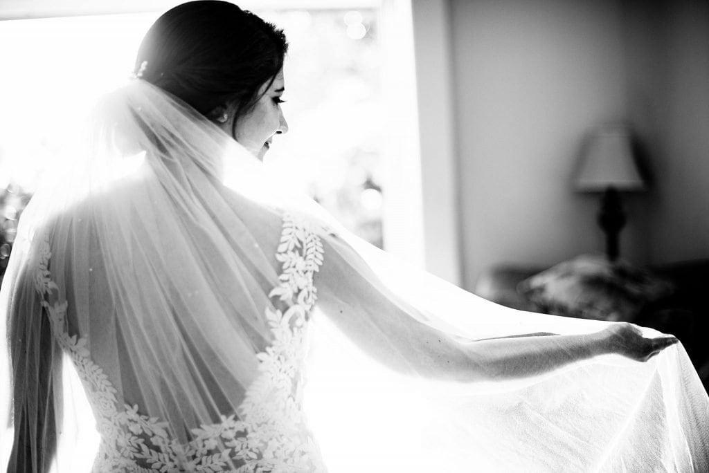 bride with wedding veil